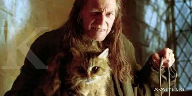 Kucing lucu Mrs. Norris di franchise film Harry Potter.
