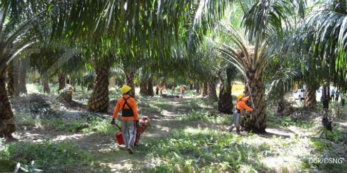 Bangun 6 Pabrik Bio-CNG, DSNG Bakal Menghemat Penggunaan Solar 16 Juta Liter