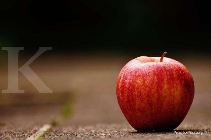 Apel bisa jadi cemilan untuk ibu hamil.