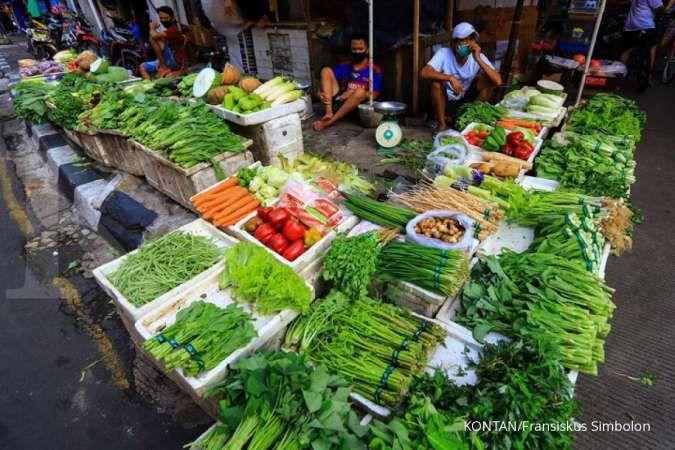Simak tips menyimpan sayuran agar tahan lama dan tidak cepat busuk