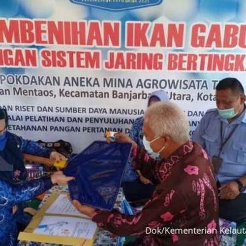 KKP Serahkan Percontohan Pembenihan Ikan Gabus di Kota Banjarbaru