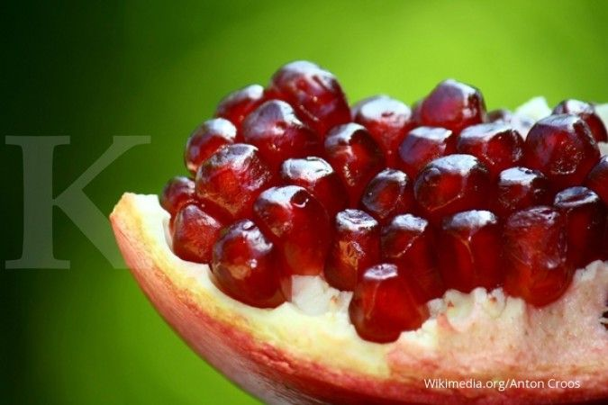 Wajib Anda coba, 6 rekomendasi makanan penambah darah ini
