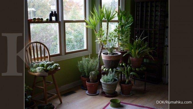 Ini lima cara menjaga lingkungan di rumah
