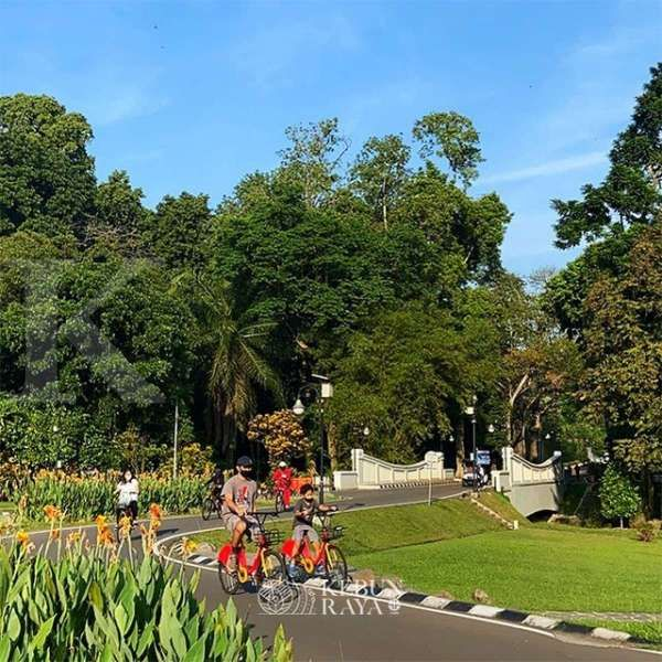 Tetap buka di tengah pandemi, Kebun Raya Bogor perketat protokol kesehatan