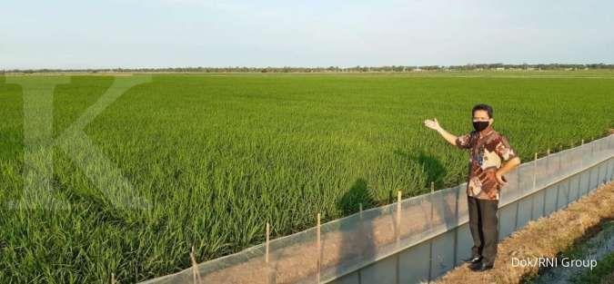 Pengamat jabarkan deretan kegagalan food estate yang dicanangkan pemerintah