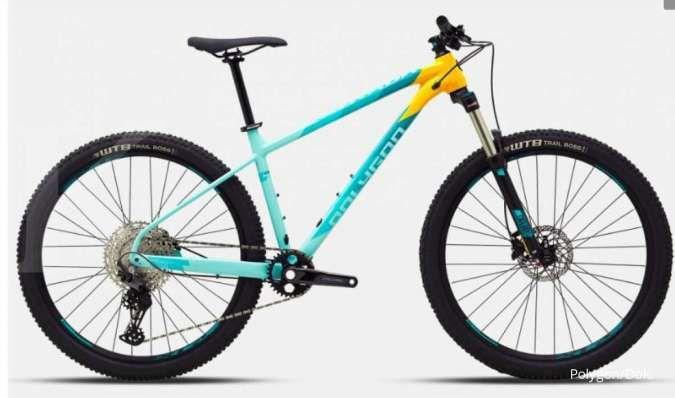 harga sepeda gunung polygon xtrada 7