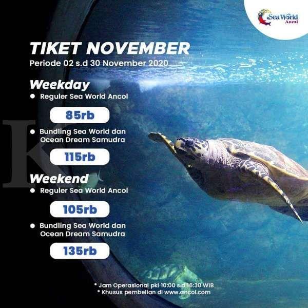 Harga tiket masuk Sea World Ancol
