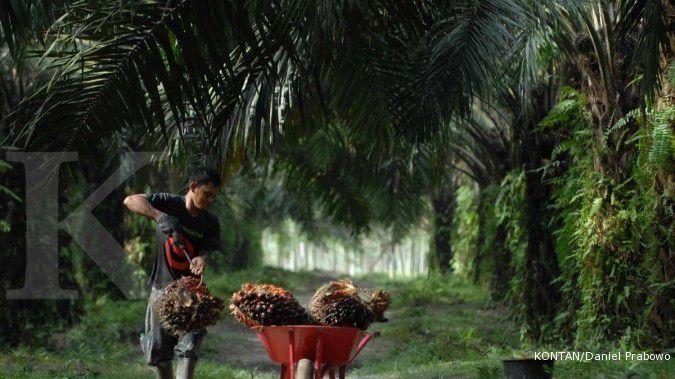 Ini penyebab rugi bersih Bakrie Sumatera Plantations (UNSP) melebar