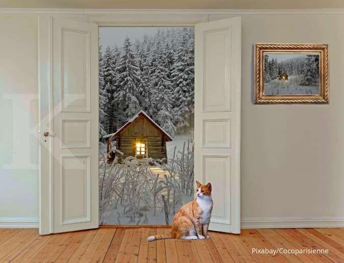 Penyebab Kucing Peliharaan Selalu Kabur dari Rumah dan Cara Mengatasinya