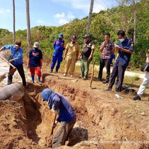 KKP dan Masyarakat Tangani Dugong Terdampar di Bawean