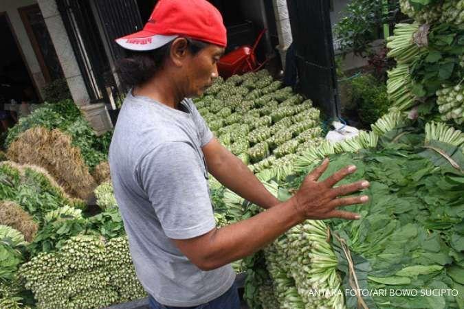 Pekerja menata sayuran sawi hasil panen yang melimpah di Tumpang, Malang, Jawa Timur, Senin (1/6/2020). Badan Karantina Pertanian terapkan 5 kebijakan strategis untuk ungkit ekspor.