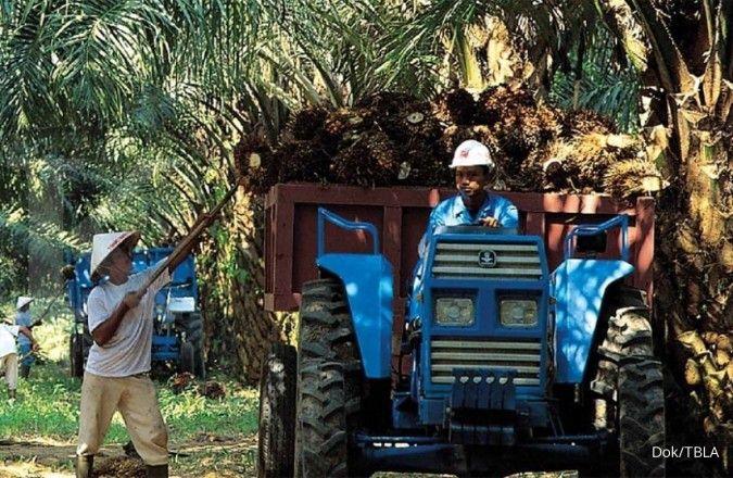 Tunas Baru Lampung (TBLA) bidik pendapatan hingga Rp 14 triliun pada tahun ini