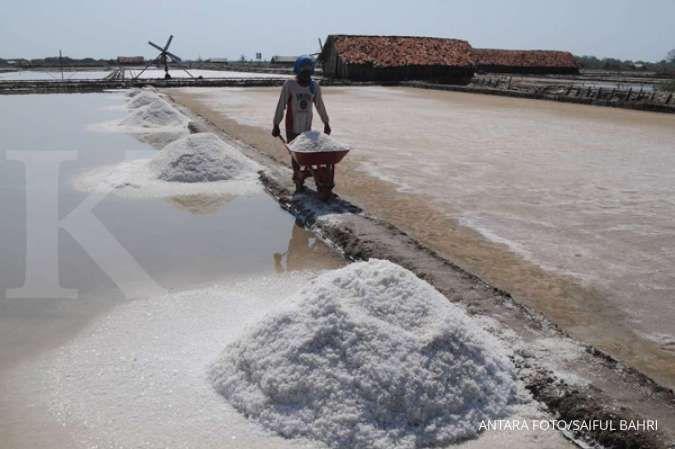Simak strategi PT Garam memenuhi kebutuhan garam industri di dalam negeri