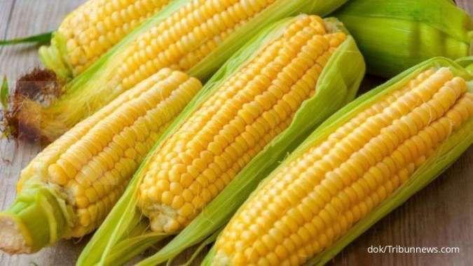 5 Manfaat jagung untuk kesehatan: mengobati anemia sampai menjaga kesehatan jantung