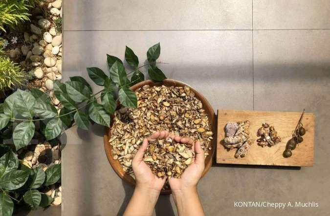 Rempah Herbal Ini Bisa Bantu Atasi Masalah Perut