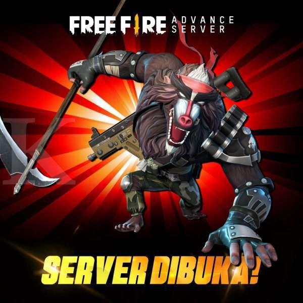Cara Daftar Dan Download Free Fire Advance Server Apk Terbaru November 2020