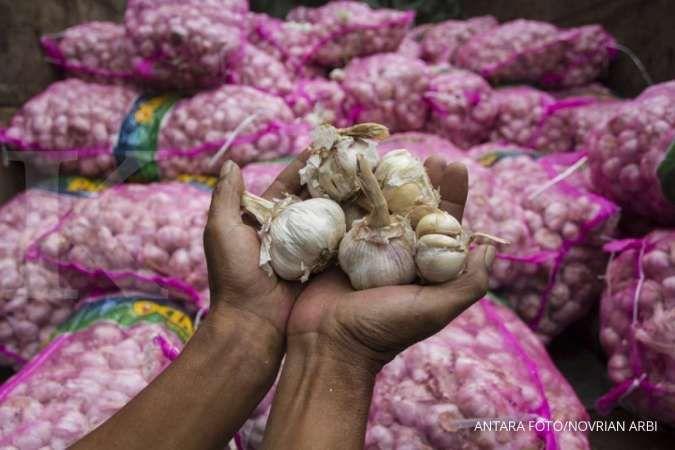 Manfaat bawang putih untuk kesehatan yang wajib Anda ketahui