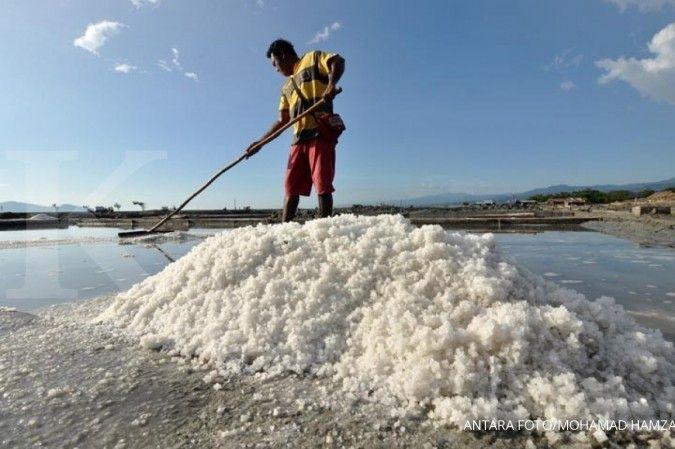 Produsen garam lokal belum bisa penuhi kebutuhan bahan baku garam industri