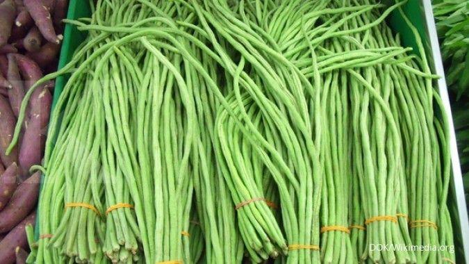 4 Manfaat kacang panjang ini berguna untuk kesehatan