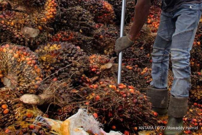 Gapki: Ekspor sawit Indonesia normal meski sejumlah negara larang kedatangan WNI