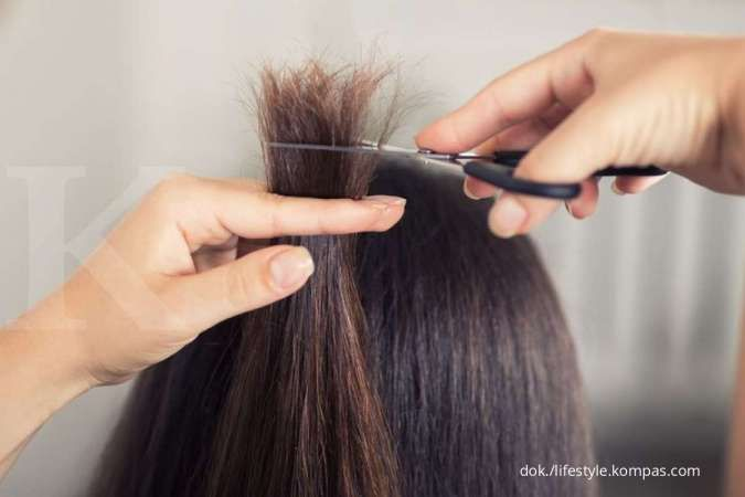 Tips Mengatasi Rambut Bercabang