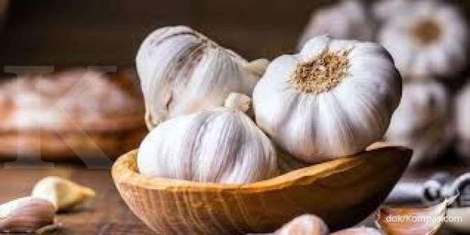 Obat sakit gigi anak bisa terbuat dari bawang putih.