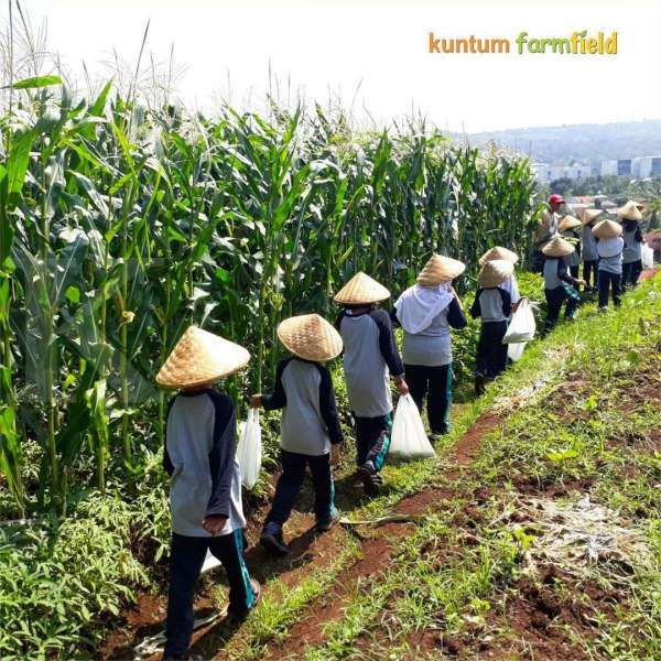 Punya konsep back to nature, wisata edukasi Kuntum Farmfield ada di Bogor