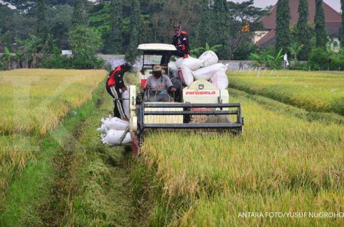 Pemerintah diminta menyiapkan secara matang pembentukan holding BUMN pangan