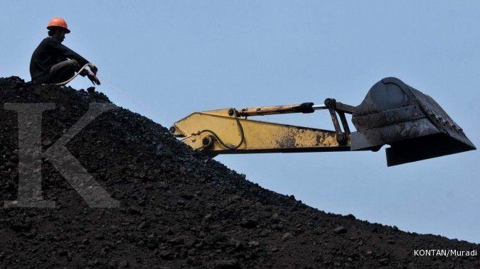 Harga batubara masih rally, begini dampaknya terhadap margin emiten pengguna batubara