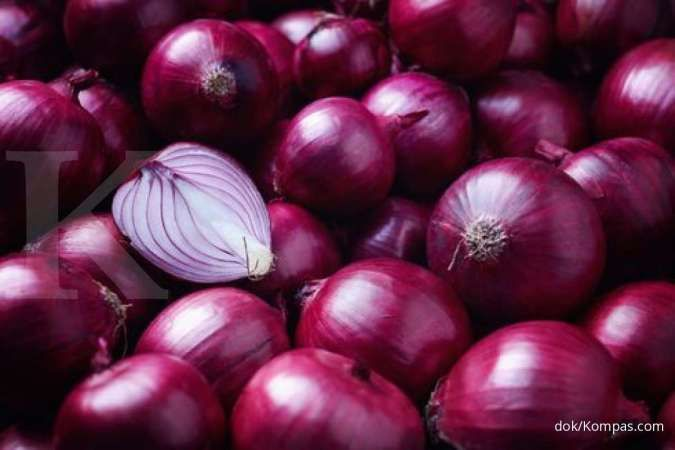 Your desire to get the benefits of red onion needs to be aware of the risks that you can experience.
