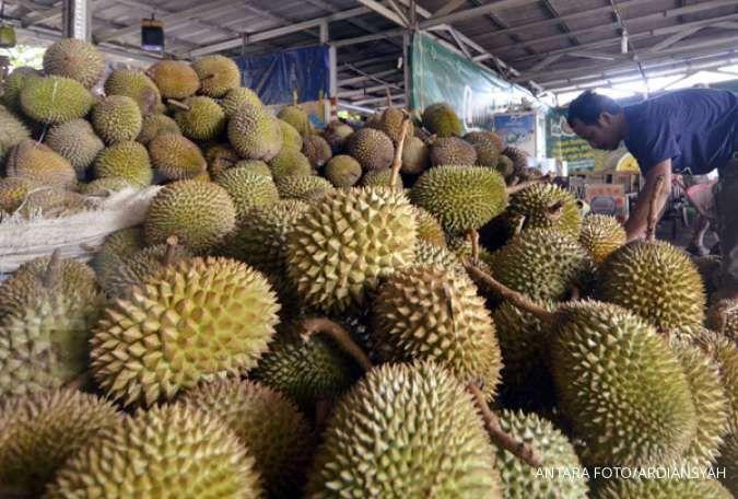 Manfaat durian bisa mencegah penyakit kardiovaskular.