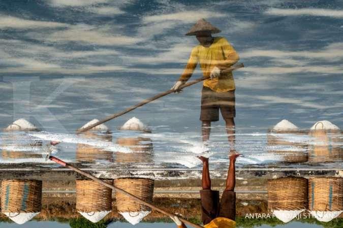 PT Garam menggandeng Kimia Farma untuk distribusi garam lososa