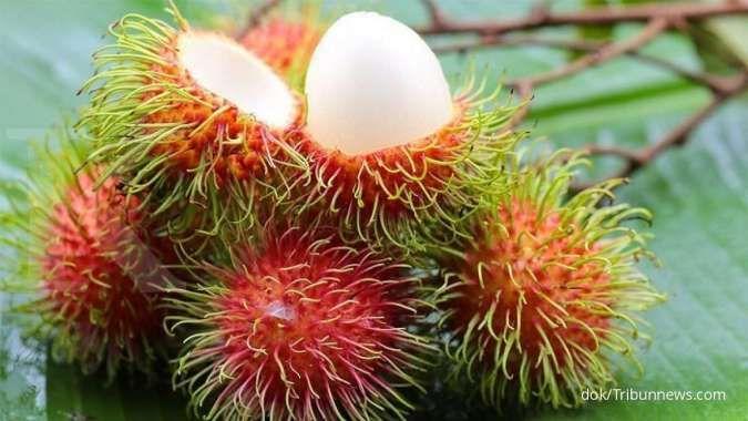 Anda perlu tahu, ini 6 manfaat buah rambutan untuk kesehatan