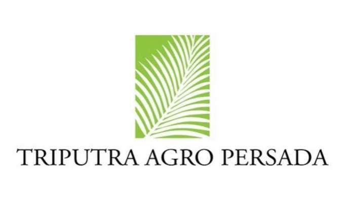 Ini rencana bisnis Triputra Agro Persada (TAPG) di tahun 2021