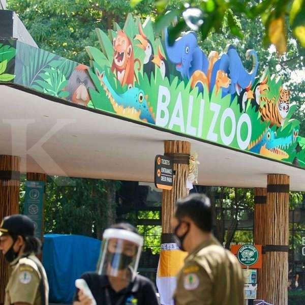 Bali Zoo Gianyar sudah dibuka, ini harga tiket wisatawan domestik. Dok: Bali Zoo Gianyar.
