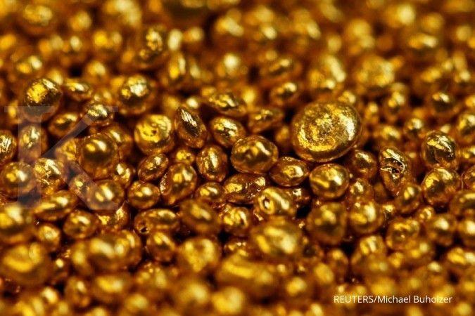 Butiran emas tersebar di pesisir pantai desa ini, warga gempar