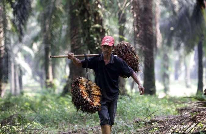 Indonesia-EFTA CEPA ubah persepsi sawit di Eropa