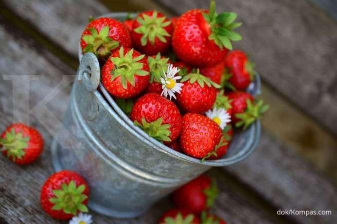 Salah satu manfaat strawberry adalah menjaga kesehatan mata Anda.