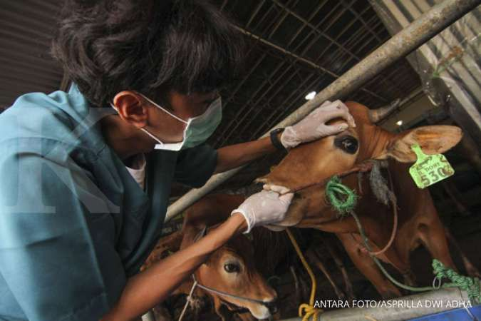 Polisi akan awasi penyembelihan hewan kurban di Jakarta, ada apa?
