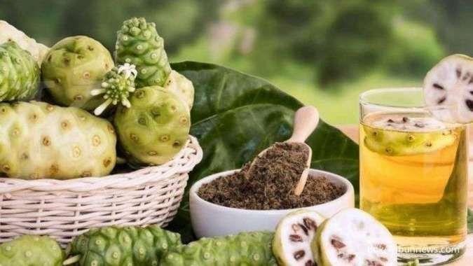 6 Manfaat mengkudu untuk kesehatan: menurunkan asam urat sampai kolesterol tinggi