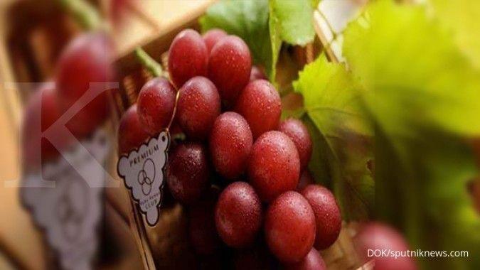Buah anggur dapat Anda gunakan sebagai obat liver.