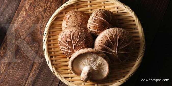 4 Jamur yang efektif menurunkan kolesterol tinggi bila dikonsumsi rutin