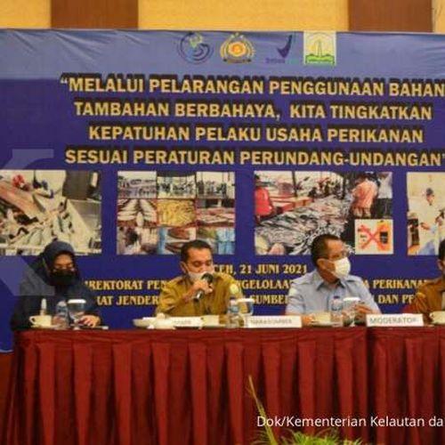 Zero Tolerance terhadap Bahan Tambahan Berbahaya, KKP Edukasi UPI Aceh