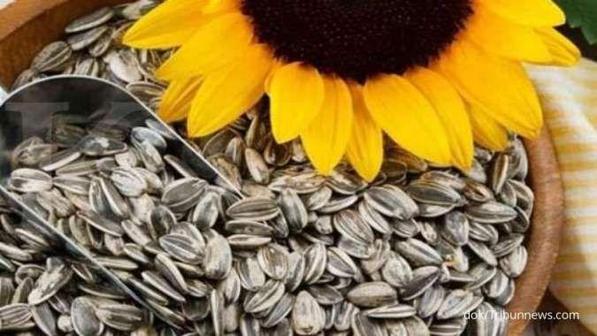 Biji bunga matahari termasuk salah satu makanan yang mengandung vitamin B.