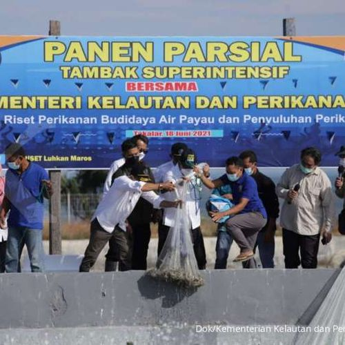 Menteri Trenggono Akan Buat Standardisasi Pengelolaan Tambak Superintensif