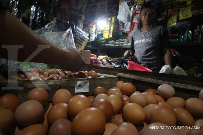 Telur merupakan salah satu makanan untuk penderita asam lambung.