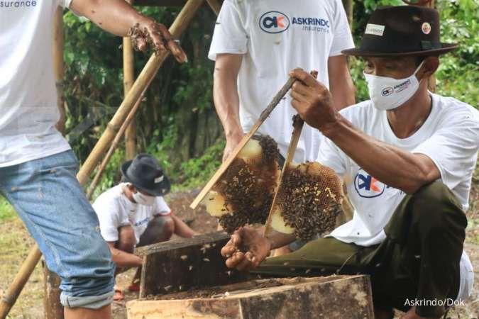 Askrindo dukung usaha peternakan lebah hutan alam roban di Batang, Jateng