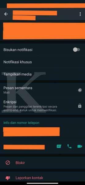 Menu pesan sementara di obrolan WhatsApp