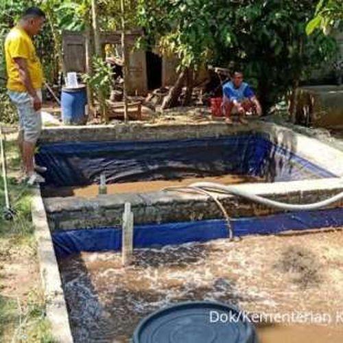 Permodalan KKP Sukseskan Budidaya Lele di Gunungkidul, Menteri Trenggono Ingin Perbanyak Kampung Budidaya