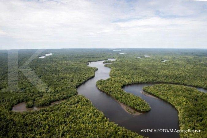 Penghentian pemberian izin hutan alam primer dan lahan gambut capai 66,18 juta ha